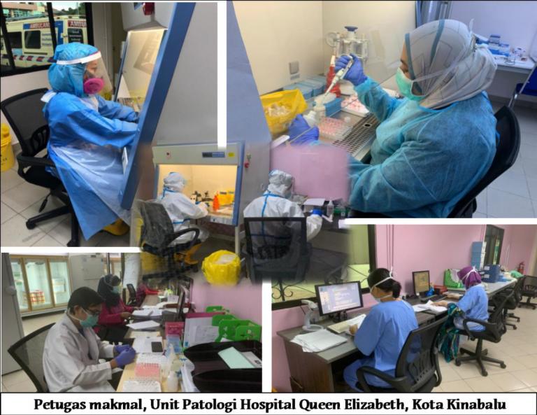 Malaria cases down 43% in Sabah